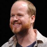 Joss Whedon Refutes the Idea of $100 Million Salary for Avengers 2