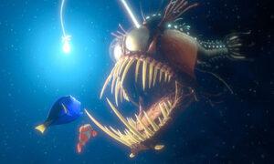 Finding Nemo Jiro Dreams of Sushi