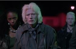 Vamp albino street gang