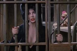 Elvira mistress of the dark jail