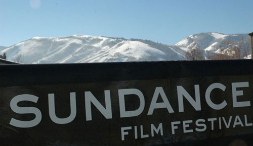 film festival programming
