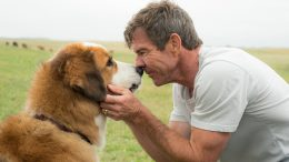 'A Dog's Purpose' Movie Review